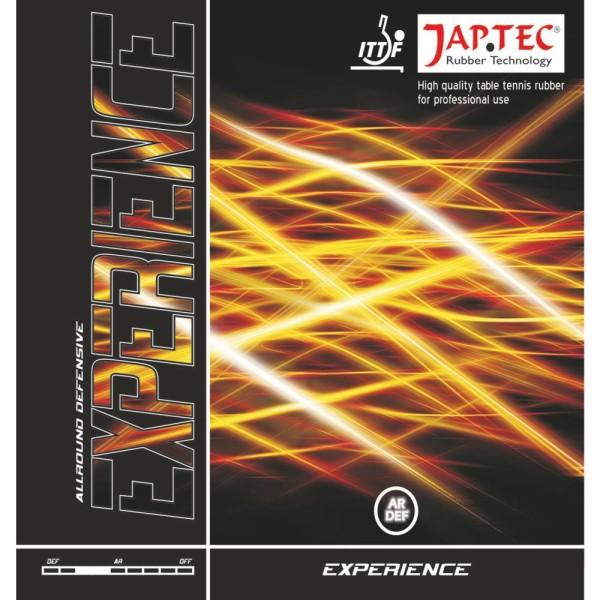 JAP TEC Experience